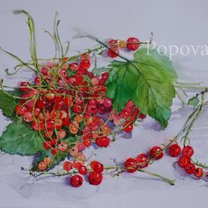 """Red currant green leaves"" Natalia Popova - Professional Artist"