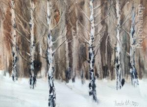 """Birches from Siberia"" Natalia Popova - Professional Artist"