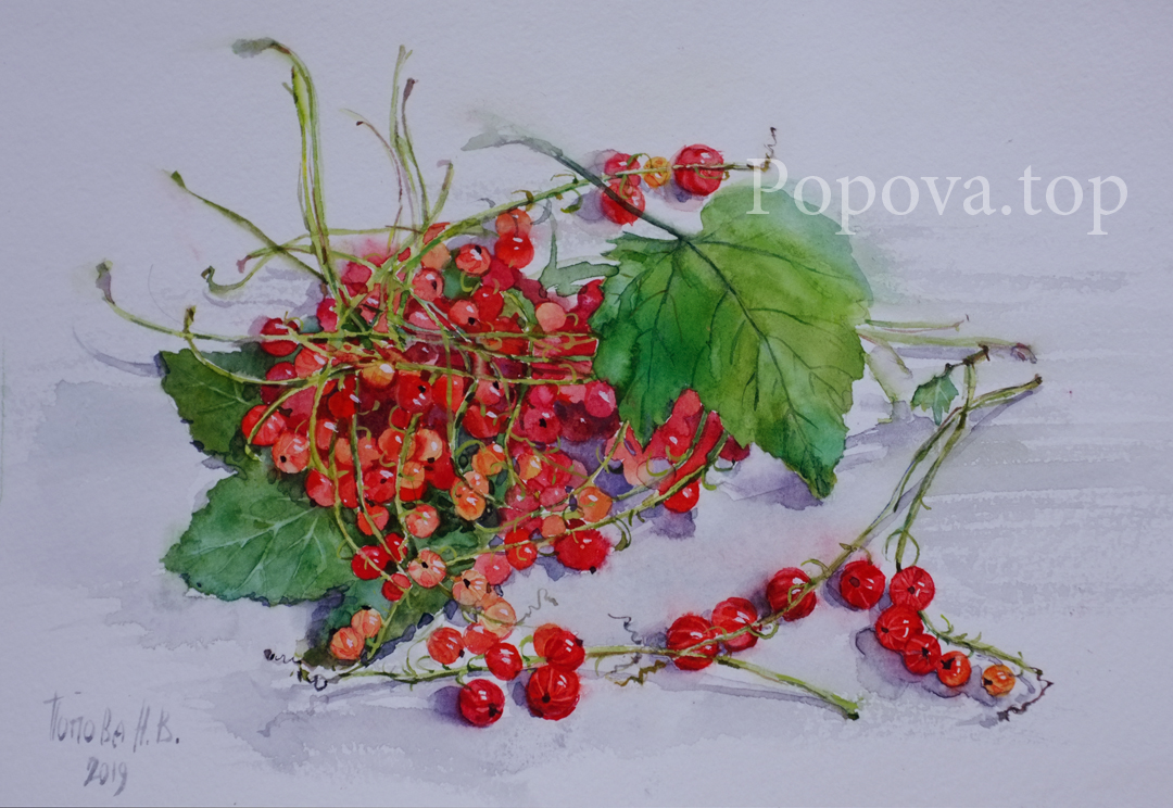 Red currant green leaves Picture A4 Watercolor Painted by Natalia Popova - Professional Artist in 2019