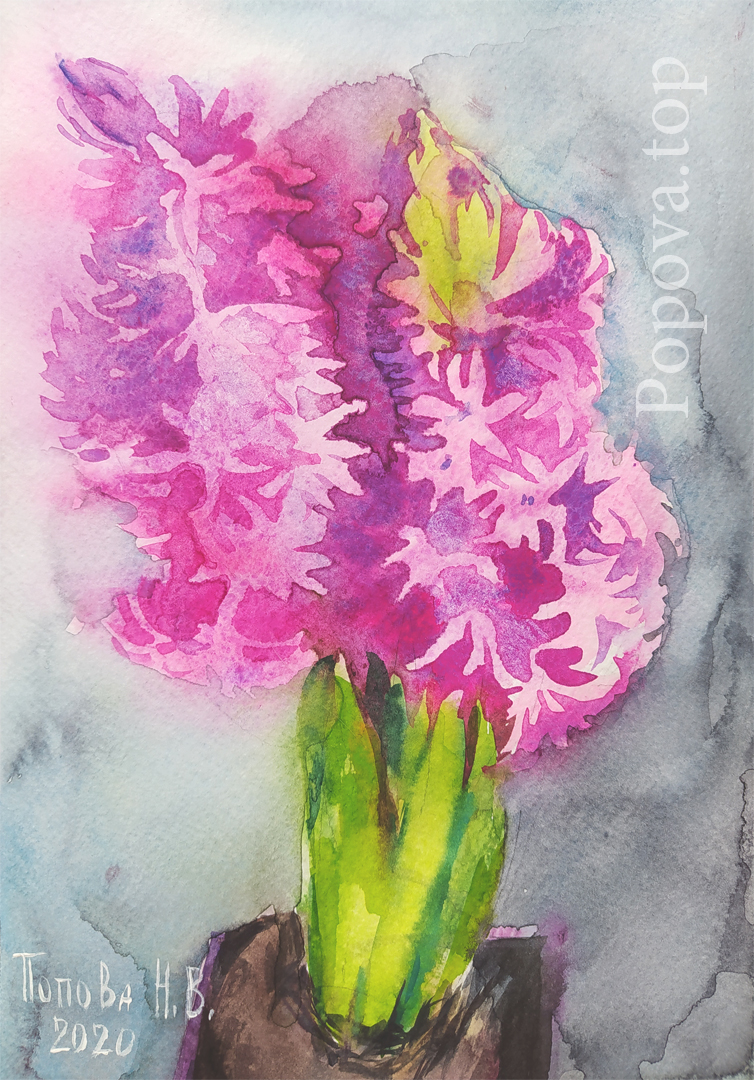 Hyacinth Painting Watercolor 16x22 A quick sketch from nature on cellulose Nataliya Popova - Professional Artist 2020