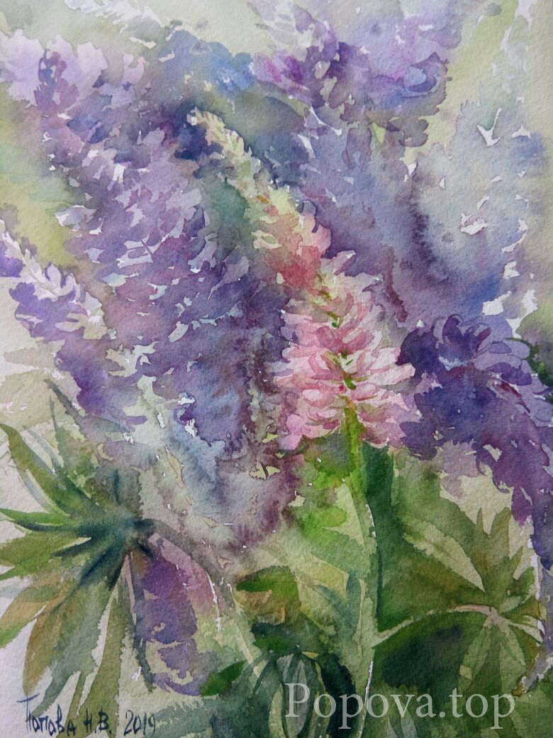 Mosquito Lupins Painting Watercolor 26x36 Written by Natalia Popova - Professional Artist in 2019