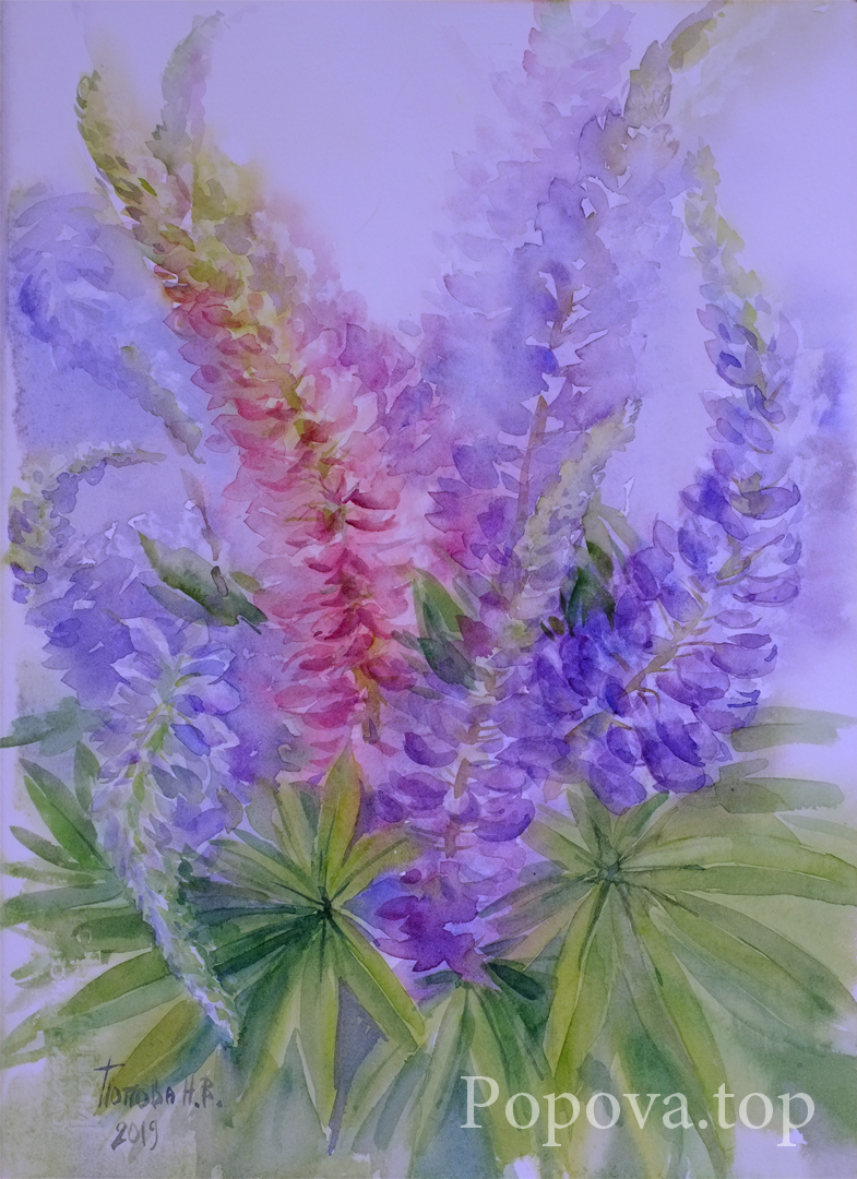 Lupins 2 Watercolor 28x38 Painting by Natalia Popova - Professional Artist in 2019