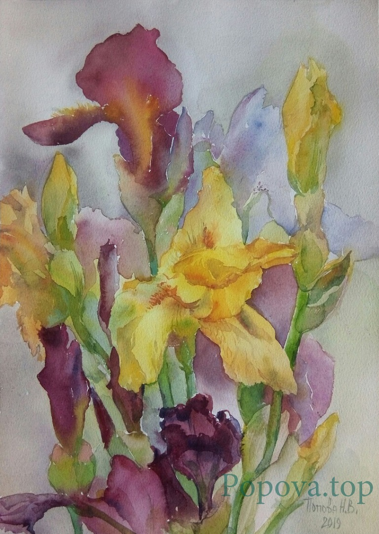 Irises Painting Watercolor 26x36 Written by Natalia Popova - Professional Artist in 2019