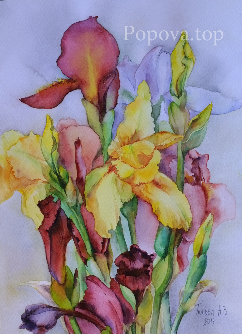 Irises 2 Painting Watercolor 34x42 repeat to order Natalia Popova - Professional Artist 2019